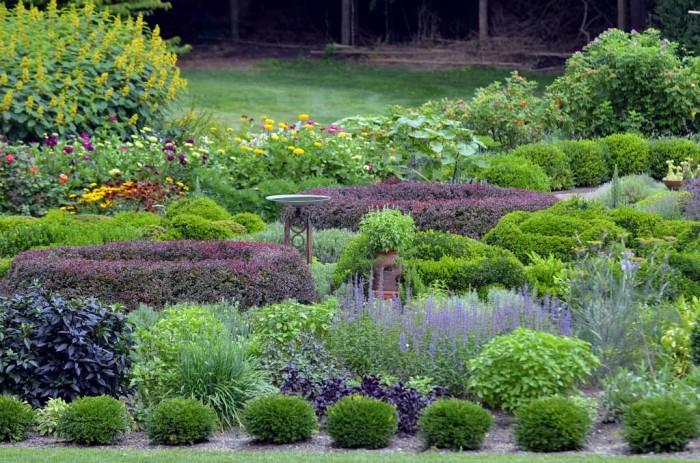 Arnold Arboretum Boston