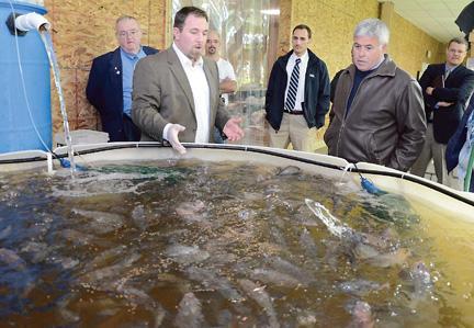 Aqua Vita Farms Oneida county group tours