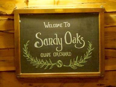 sandy-oaks-olive-farm-group-tours