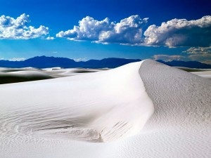 White Sands Las Cruces New Mexico group tours