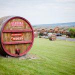 Glenora Wine Cellars Vineyard NY Fingerlakes Wedding