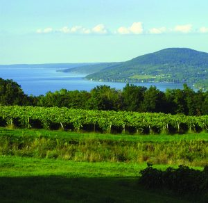 Seneca Lake wine tasting