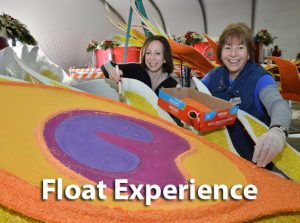Float-Experience